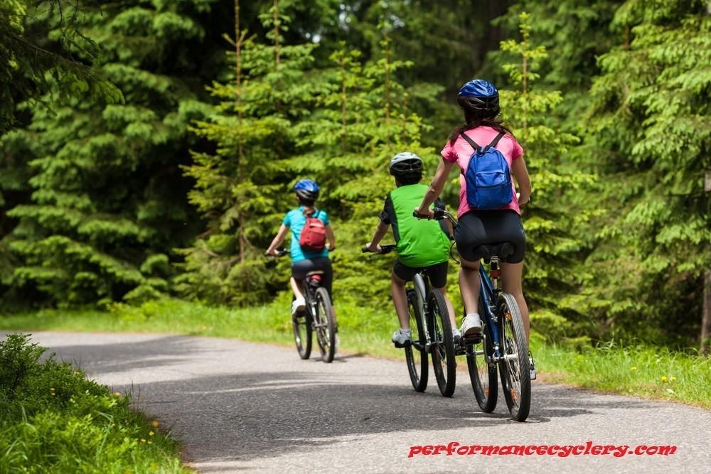 Maintain Single Speed Mountain Bike