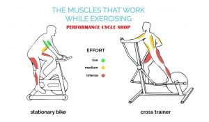 Toning Your Muscles By Using Recumbent Exercise Bikes
